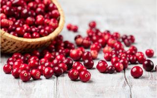 Клюква при диабете: полезные свойства ягод