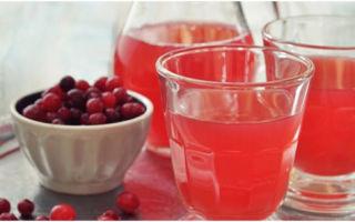 Как узнать, можно ли пить кисель при сахарном диабете 2 типа: правила употребления