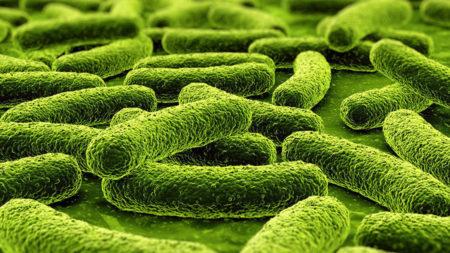 Туберкулез и гепатит при сахарном диабете thumbnail